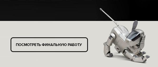 Финальная работа Анна Кудиновой