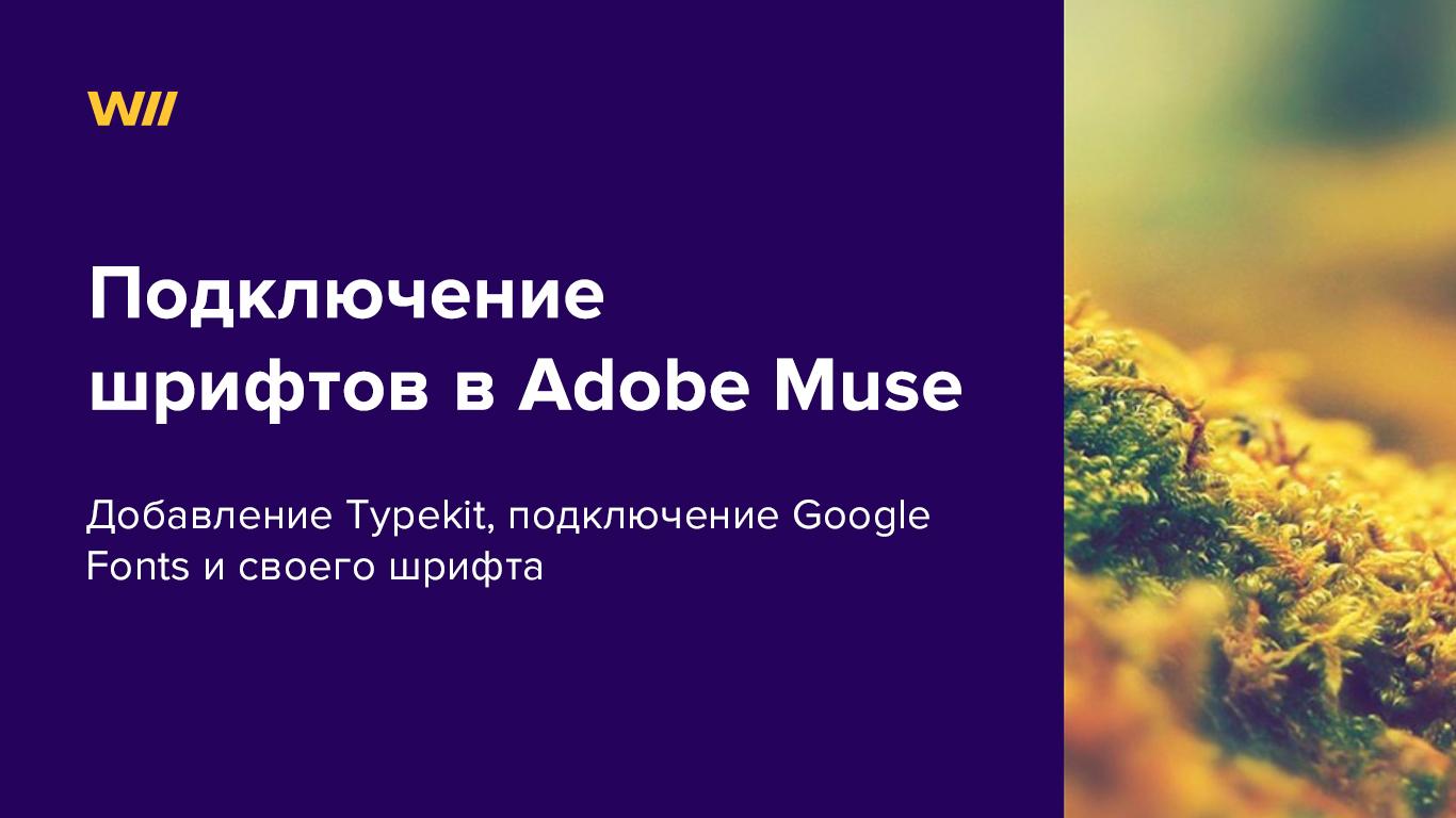 картинка к статье про подключение шрифтов в Adobe Muse